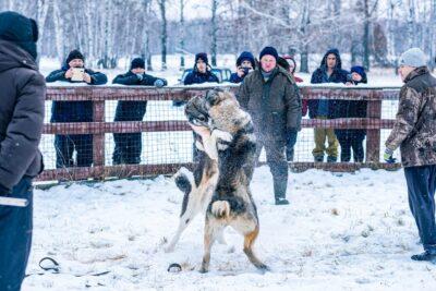 Фото vk.com